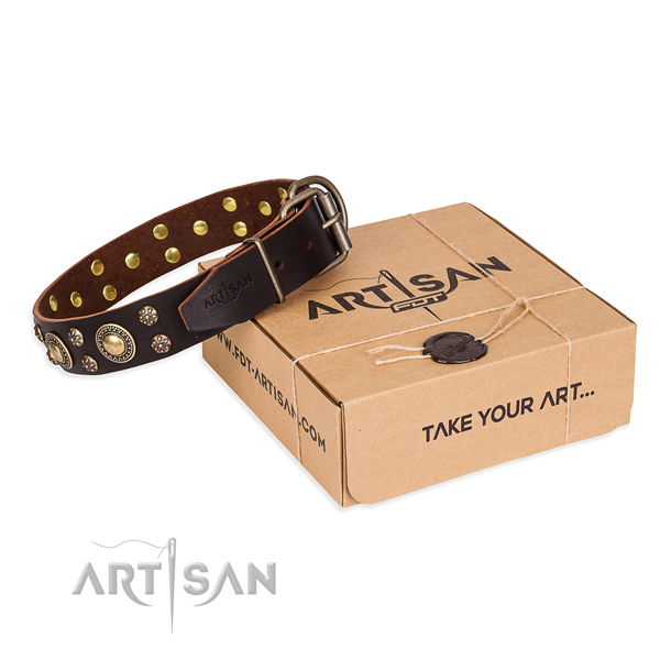 Top notch genuine leather dog collar for walking