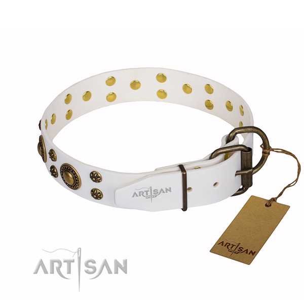 Unique full grain leather dog collar for everyday use