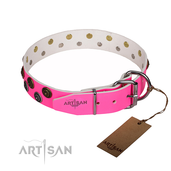 Daily walking natural genuine leather collar with embellishments for your canine