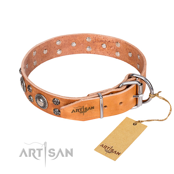 Handy use full grain leather collar with embellishments for your four-legged friend