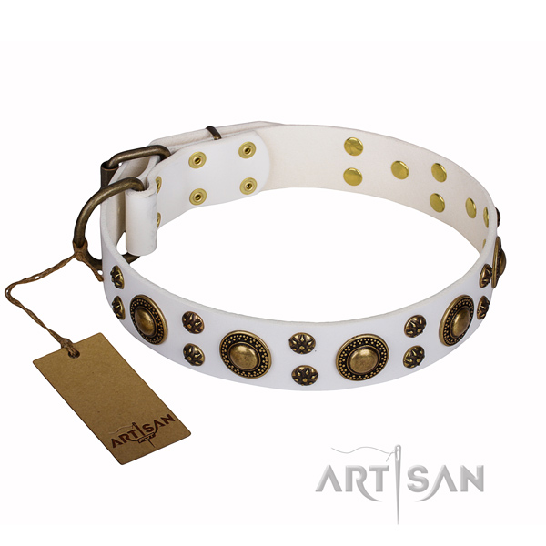 Walking full grain natural leather collar with decorations for your canine
