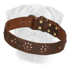 Decorated Leather Bullmastiff Collar Brown for Walking