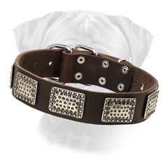 Bullmastiff Leather Collar Decorated Massive Plates for Walking