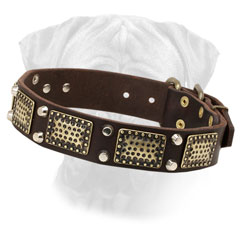 Bullmastiff Collar Decorated Leather Riveted Pyramids for Walking