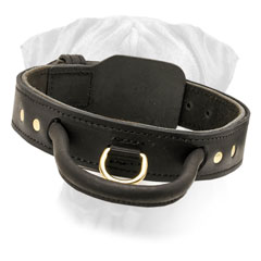 Collar Bullmastiff Leather with Handle for Training and Walking