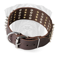 Bullmastiff Leather Collar Wide Adjustable for Walking