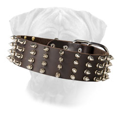 Bullmastiff Leather Collar Wide for Walking