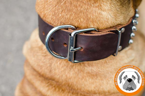 Bullmastiff leather collar with stylish cones