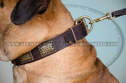 Leather Dog Collar Good-looking