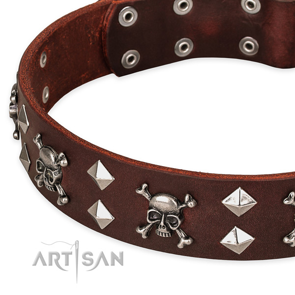Top quality leather dog collar for fail-safe use