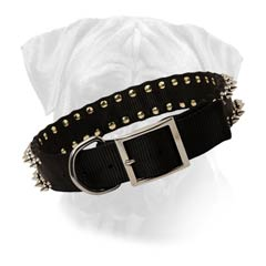 Nylon Dog Collar with 2 rows of spikes