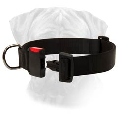 Comfy Handling Bullmastiff Nylon Dog Collar
