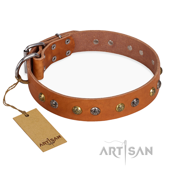 Comfortable wearing easy adjustable dog collar with corrosion resistant hardware
