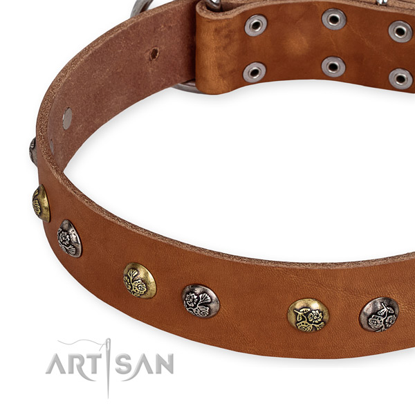 Natural genuine leather dog collar with unique corrosion resistant studs