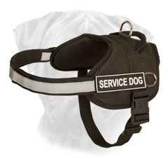 Adjustable Nylon Dog Harness for Bull Mastiff with Reflective Front Strap