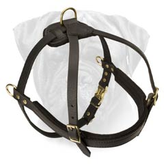 Super Strong Bullmastiff Harness