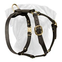 Top Quality Leather Dog Harness with Adjustable Straps