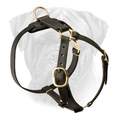 Obedience Training Leather Dog Harness