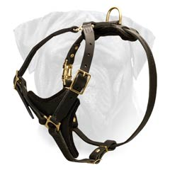 Bullmastiff Dog Breed Leather Harness Carefully Stitched and Padded With Y-shape Chest