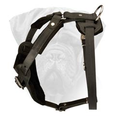 Leather Dog Harness With Soft Padding And Option Handle