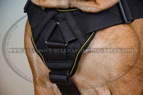 Incredible Dog Harness