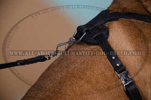 Dog Harness Durable