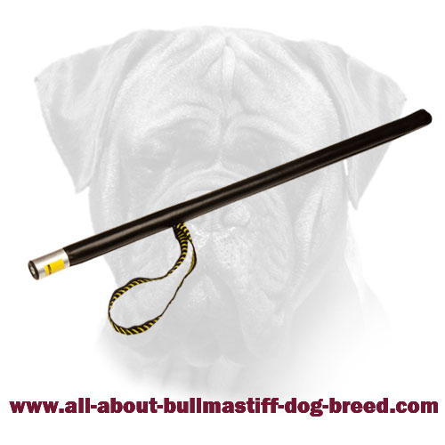 Agitation Stick For Bullmastiff Training