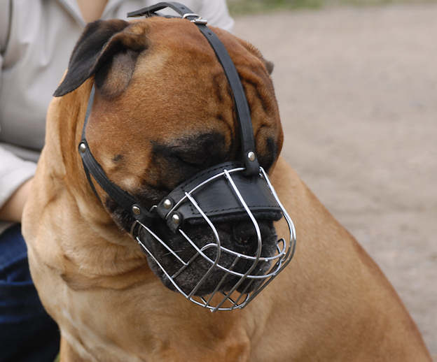 Best Fit dog Muzzle for Bullmastiff- wire Muzzle