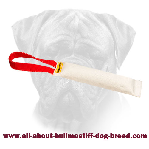 Bullmastiff Training Bite Tug made of Fire Hose With Handle