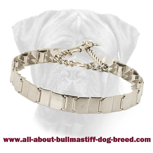 Stainless Steel Bullmastiff Prong Collar for Obedience Training