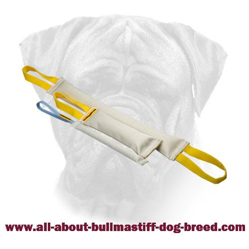 Bite Tugs Bullmastiff Fire Hose Set