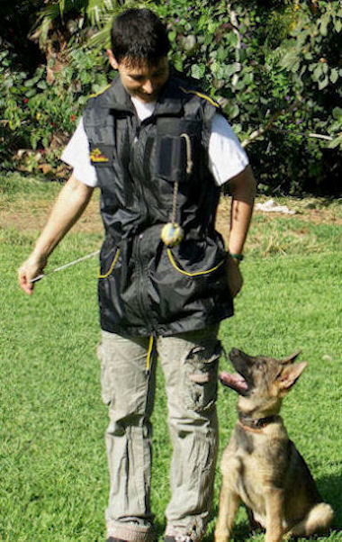 HANDLER VEST DOG TRAINING - SCHUTZHUND DOG TRAINING VESTS