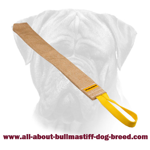 Bullmastiff Jute Bite Rag for Training Puppy