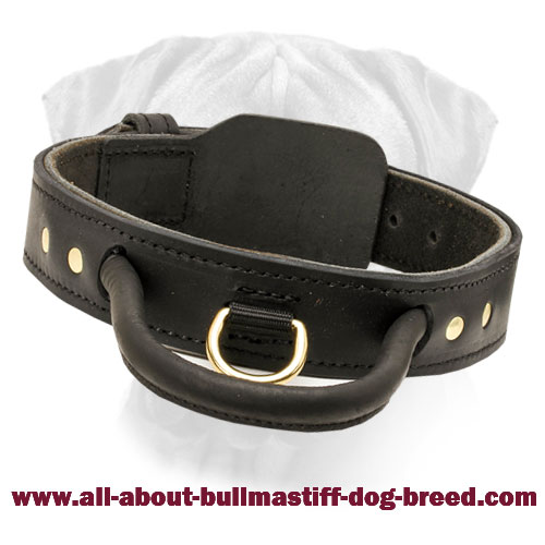 Leather Agitation Collar for Easy Control for Bullmastiff