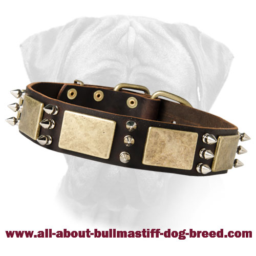 Magnificent War Dog Leather Collar