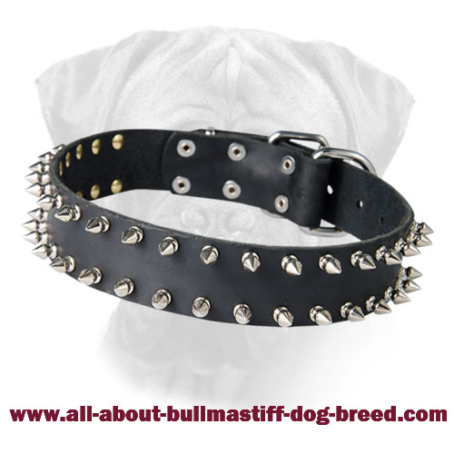 Top-grade Leather Bullmastiff Dog Collar with Spikes