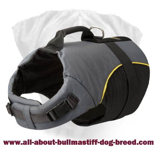 Nylon Vest Dog Harness with Handle for Bullmastiff Breed Dog Walking
