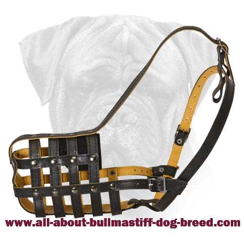 Top Quality Leather Bullmastiff Basket Muzzle for Everyday Use