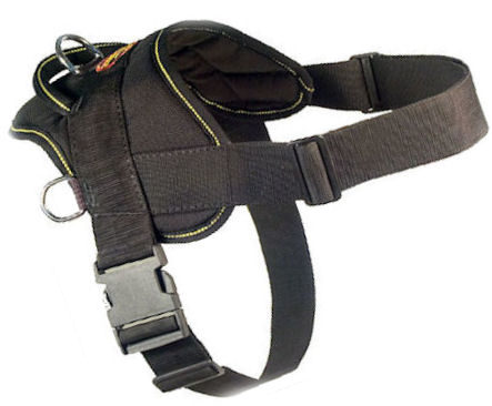 Fashion Dog Harness-Everyday Harness for Bullmastiff