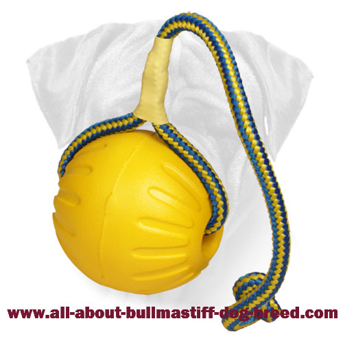 Foam Bullmastiff Ball for Training and Playing - 3 1/2 inch Diameter