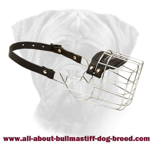 'The Silencer' Handcrafted Wire Cage Bullmastiff Muzzle