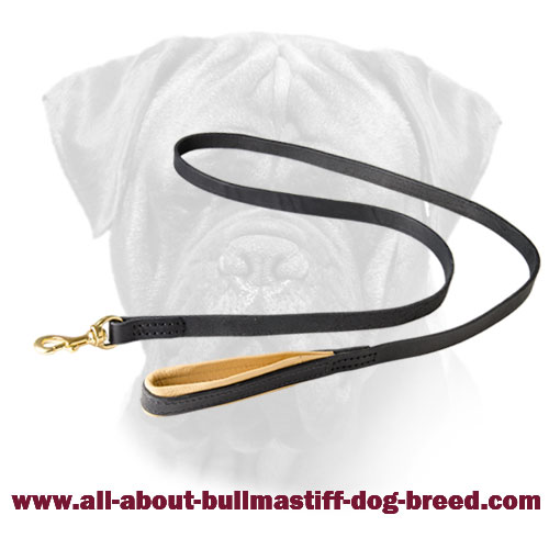 Comfortable Leather Bullmastiff Leash with Support Material on the Handle