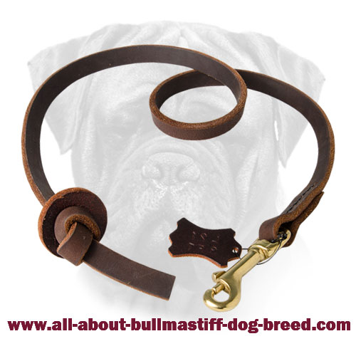Stylish Pocket Leather Bullmastiff Training Leash