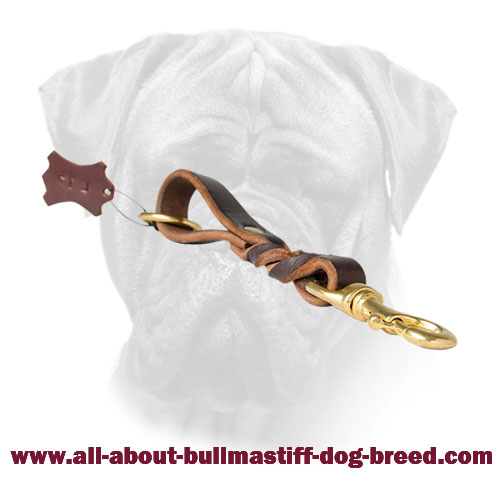 Braided Short Leather Bullmastiff Leash