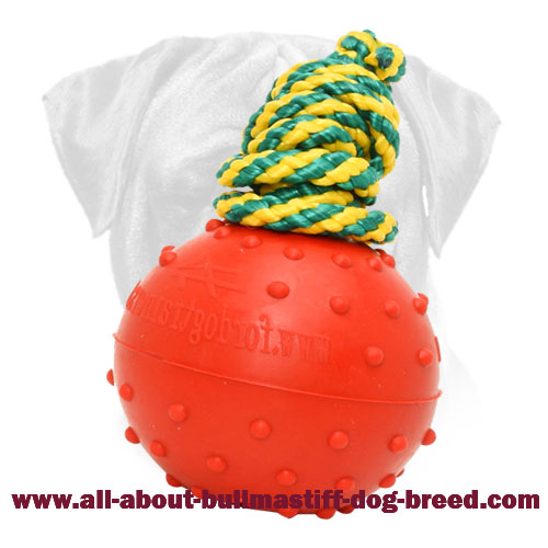 Water Rubber Bite Ball on a String for Bullmastiff Training and Playing in Water