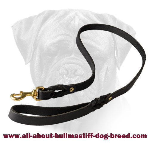 Bullmastiff Leather Braided Leash Brass Fittings