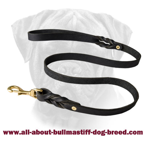 Bullmastiff Leather Braided Leash