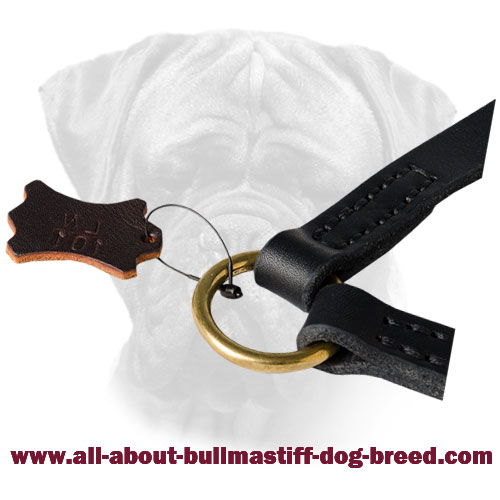 Strong Brass Ring on Leather Coupler for Bullmastiff