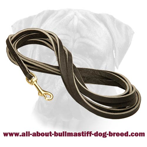 Excellent Bullmastiff Leather Leash