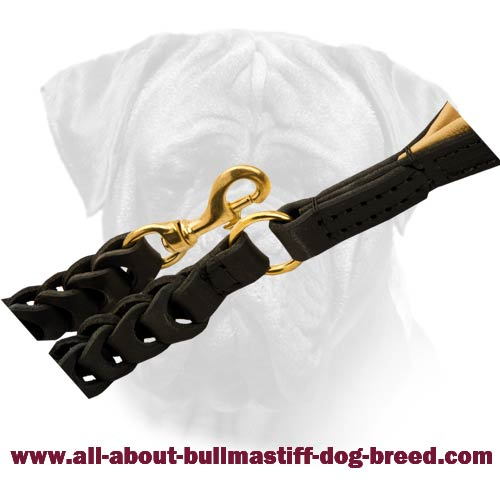 Leather Bullmastiff Leash with Rust-Resistant Hardware